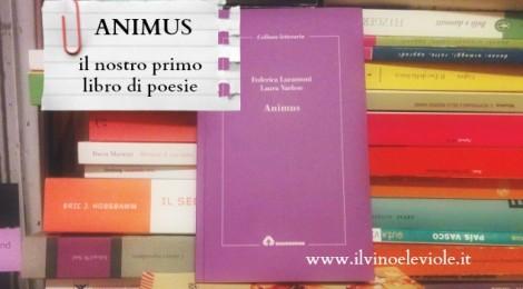 Presentazione  libro di poesie Animus