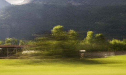Mostra fotografica di Raffaella Tagliaferri