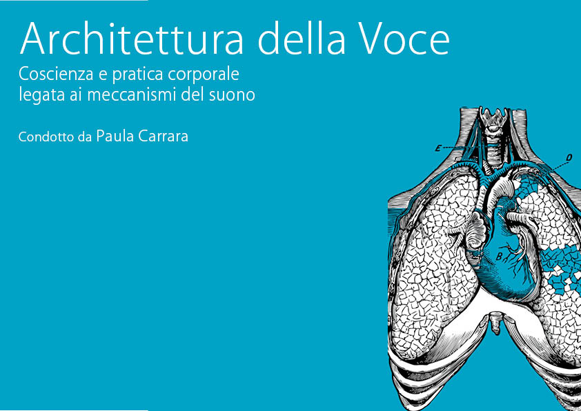 Architettura della voce